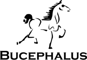 The Bucephalus Web Development company seal and logo.