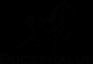 bucephalusdev-company-logo-transparentvector-1-300x206